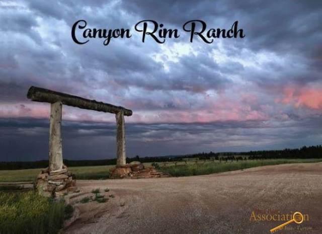 Big Sky 12 Elk Run Rd, Custer, SD 57730 (MLS #142378) :: Black Hills SD Realty