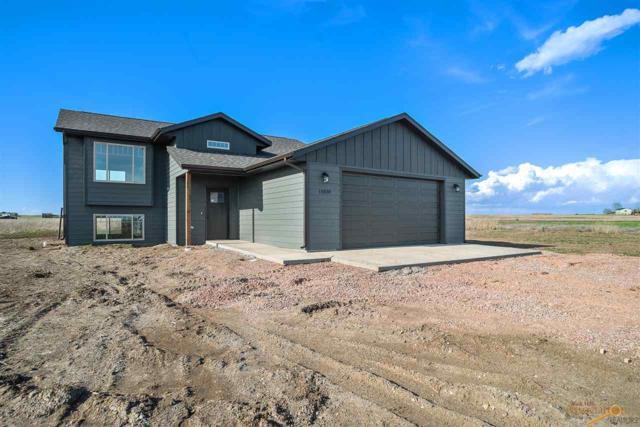 15030 Mandi Ln, Box Elder, SD 57719 (MLS #142785) :: Dupont Real Estate Inc.