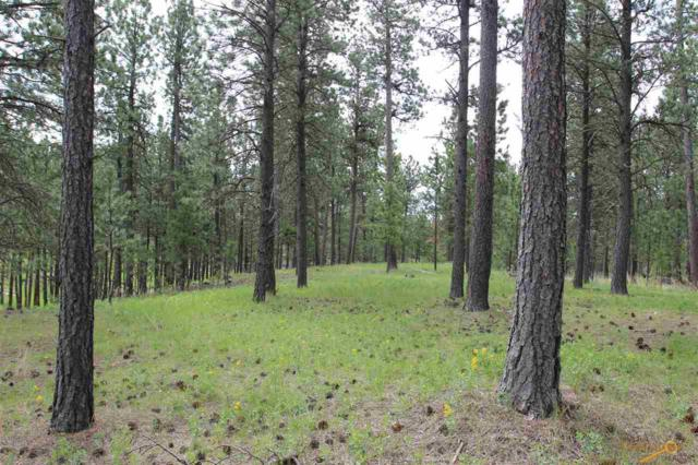 Lot 9 Other, Custer, SD 57730 (MLS #143044) :: Dupont Real Estate Inc.