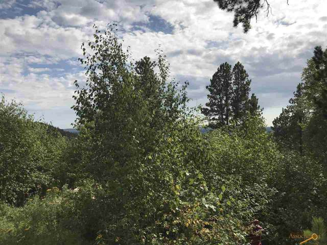 TBD Wapiti Rd, Lead, SD 57754 (MLS #145501) :: Heidrich Real Estate Team