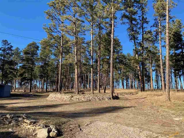 9790 Sheridan Lake Rd, Rapid City, SD 57702 (MLS #152278) :: Black Hills SD Realty