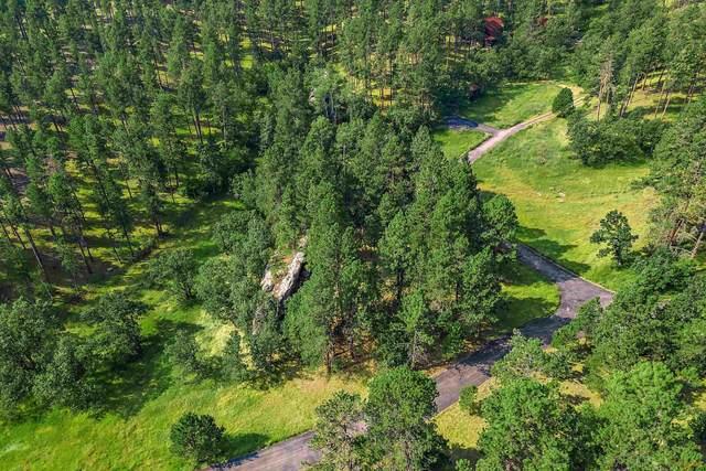 13279 Three Meadows Rd, Keystone, SD 57750 (MLS #155807) :: VIP Properties