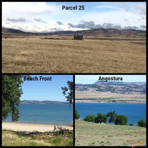 Parcel 25 E South, Hot Springs, SD 57747 (MLS #137894) :: Christians Team Real Estate, Inc.