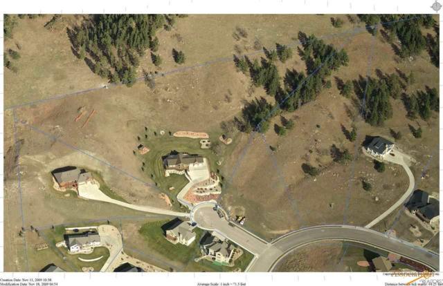 2300 Malibu Loop, Sturgis, SD 57785 (MLS #142076) :: Christians Team Real Estate, Inc.