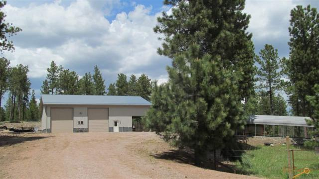 23607 Tigerville Rd, Hill City, SD 57745 (MLS #143759) :: Dupont Real Estate Inc.