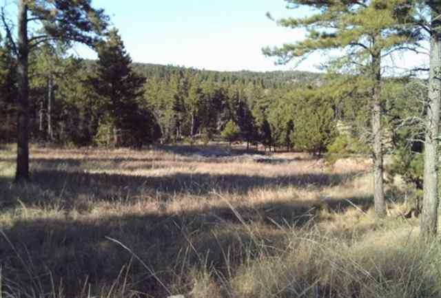 Lot 15 Saddleback Dr, Hermosa, SD 57744 (MLS #101931) :: Christians Team Real Estate, Inc.