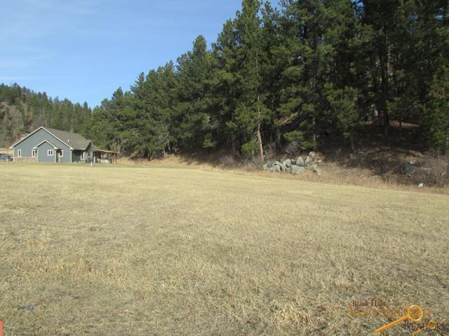 528 Major Lake Dr, Hill City, SD 57745 (MLS #131808) :: Christians Team Real Estate, Inc.