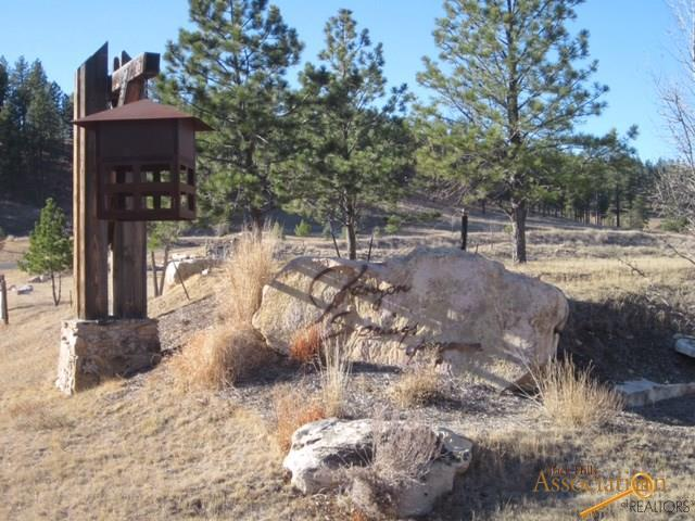 TBD Spotted Fawn Ln, Rapid City, SD 57702 (MLS #137395) :: Christians Team Real Estate, Inc.
