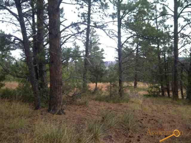 Lot 18 Pine Haven Road, Hot Springs, SD 57747 (MLS #137492) :: Christians Team Real Estate, Inc.