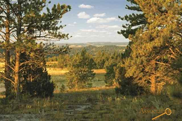 Unaddressed Custer County, Custer, SD 57730 (MLS #137888) :: Christians Team Real Estate, Inc.
