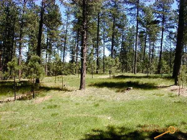 Lot 2 Jack Rabbit Rd, Custer, SD 57730 (MLS #138234) :: Daneen Jacquot Kulmala & Steve Kulmala