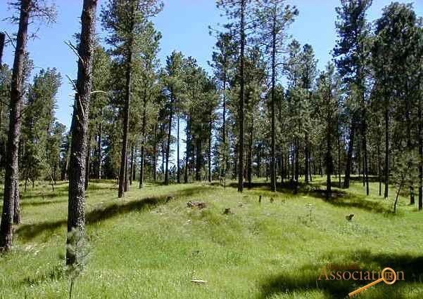 Lot 6 Eagle Ridge Dr, Custer, SD 57730 (MLS #138237) :: Christians Team Real Estate, Inc.