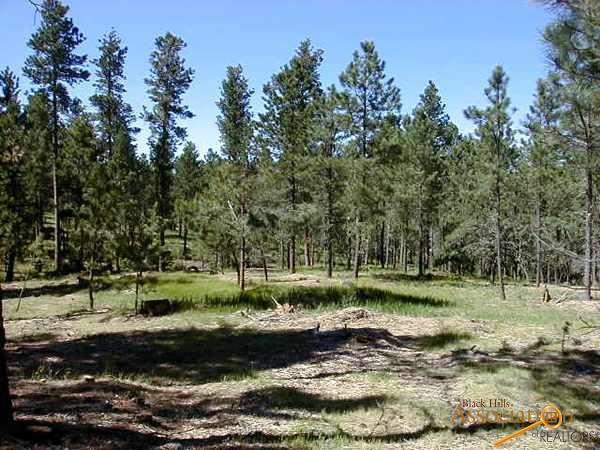 Lot 10 Eagle Ridge Dr, Custer, SD 57730 (MLS #138241) :: Christians Team Real Estate, Inc.