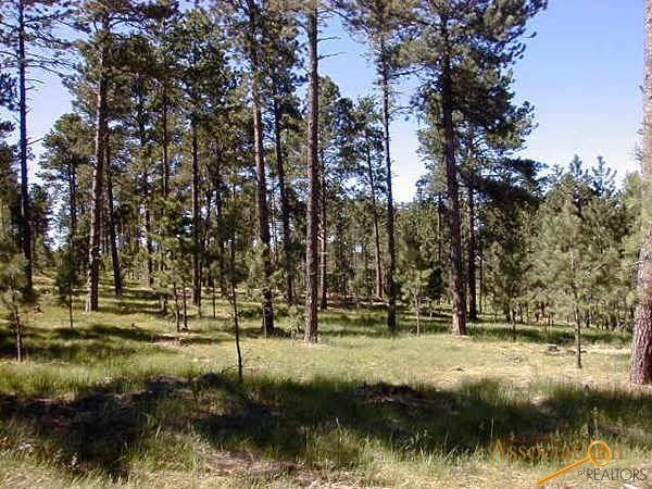 Lot 12 Eagle Ridge Dr, Custer, SD 57730 (MLS #138243) :: Christians Team Real Estate, Inc.