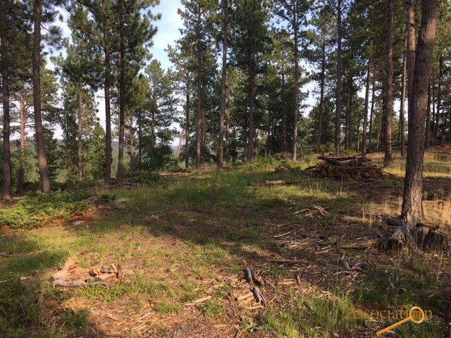 21822 Shiprock Rd, Nemo, SD 57759 (MLS #140200) :: Christians Team Real Estate, Inc.