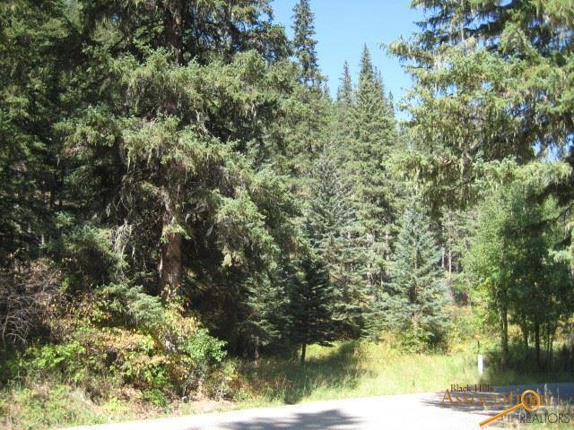 Lot 92 Hanna Rd, Lead, SD 57754 (MLS #141414) :: Christians Team Real Estate, Inc.