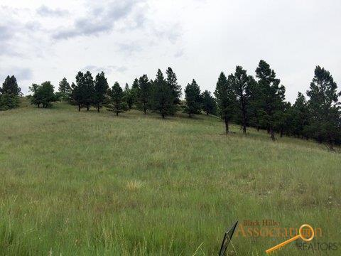 Lot L Lance, Piedmont, SD 57769 (MLS #143756) :: Dupont Real Estate Inc.