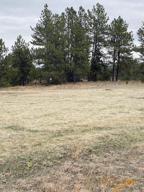 TBD Other, Hot Springs, SD 57747 (MLS #148952) :: VIP Properties