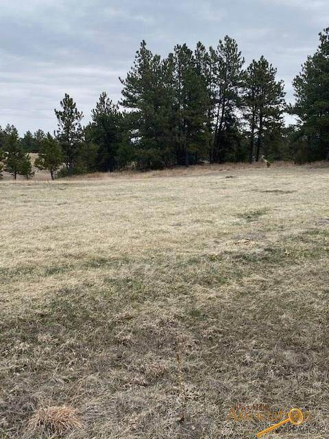 TBD Other, Hot Springs, SD 57747 (MLS #148953) :: Black Hills SD Realty
