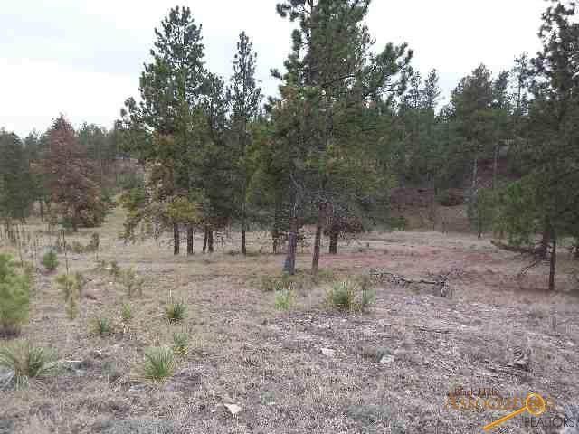 TBD Flagstone Rd, Hot Springs, SD 57747 (MLS #149621) :: VIP Properties