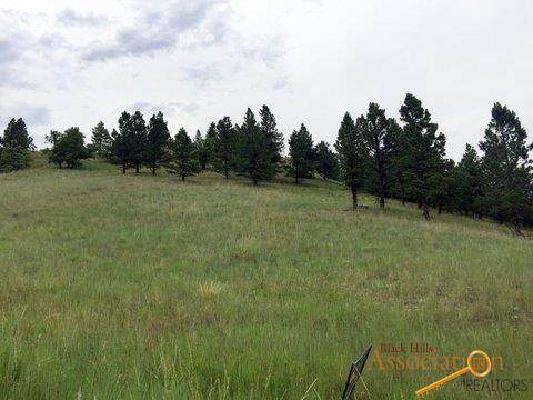 Lot L Lance, Piedmont, SD 57769 (MLS #150071) :: VIP Properties