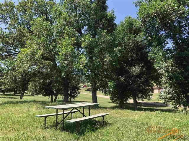8220 Elk Creek Rd, Piedmont, SD 57769 (MLS #150374) :: Dupont Real Estate Inc.