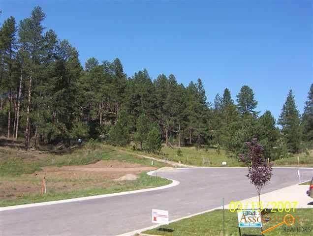 Lot 8 Granite Point Ct, Keystone, SD 57751 (MLS #150701) :: Heidrich Real Estate Team