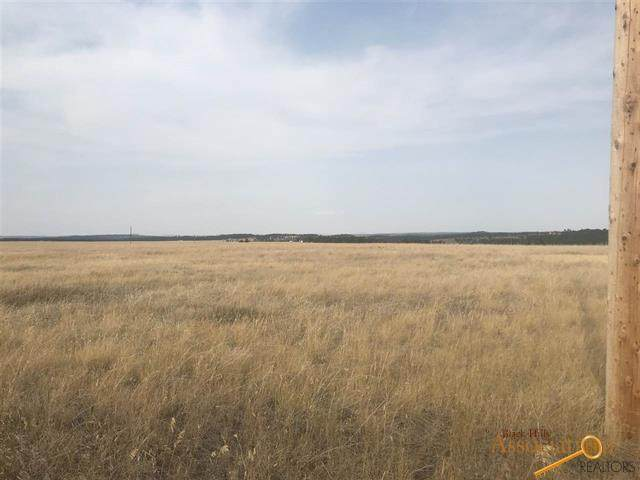 Turkey Trail, Edgemont, SD 57735 (MLS #151334) :: Dupont Real Estate Inc.