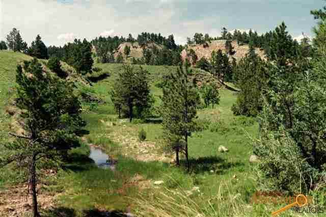 TBD Sheps Canyon, Hot Springs, SD 57747 (MLS #152426) :: Black Hills SD Realty