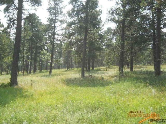 TBA Sun Ridge Rd, Rapid City, SD 57701 (MLS #152602) :: Christians Team Real Estate, Inc.