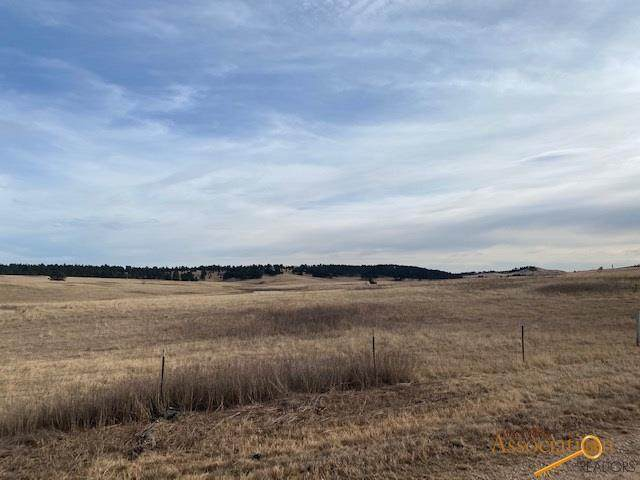 TBD lot 12R Other, Piedmont, SD 57769 (MLS #152623) :: Heidrich Real Estate Team