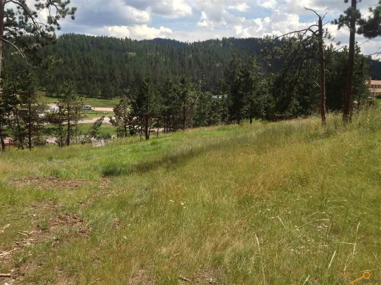 Lot 2, 24015 Hwy 385 - Photo 1