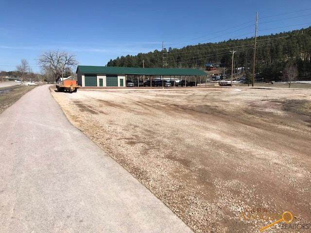 41 S Other, Custer, SD 57730 (MLS #153593) :: Black Hills SD Realty