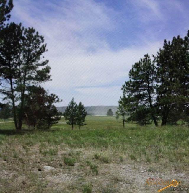Lot 4 Blk 4 Custer Highlands, Edgemont, SD 57735 (MLS #154927) :: Heidrich Real Estate Team