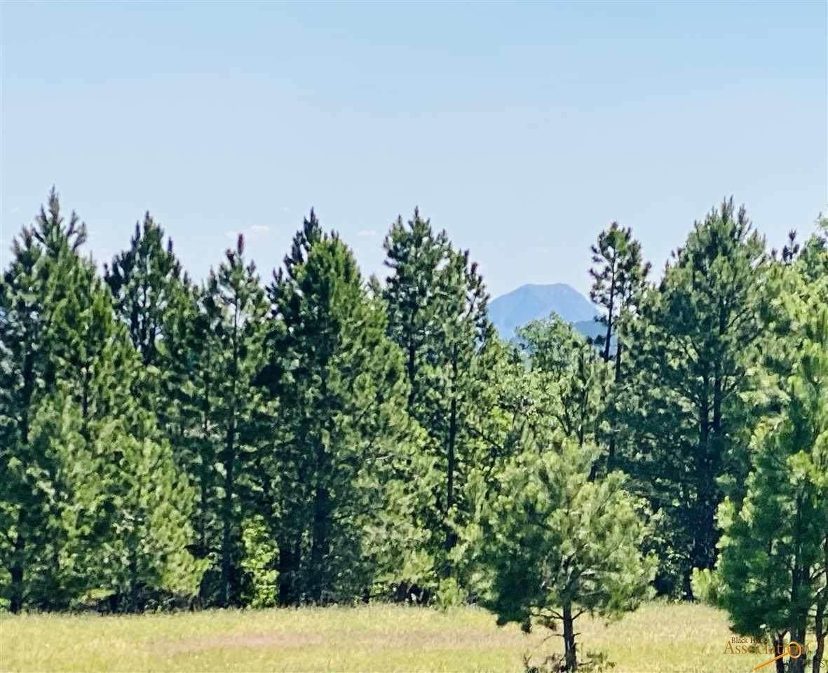 tbd tract 3 Oak - Photo 1