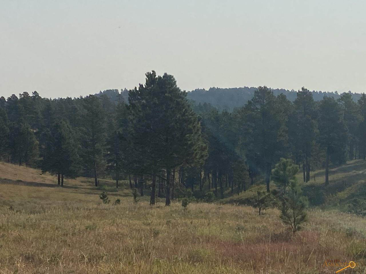 24288 Rushmore Ranch Rd - Photo 1