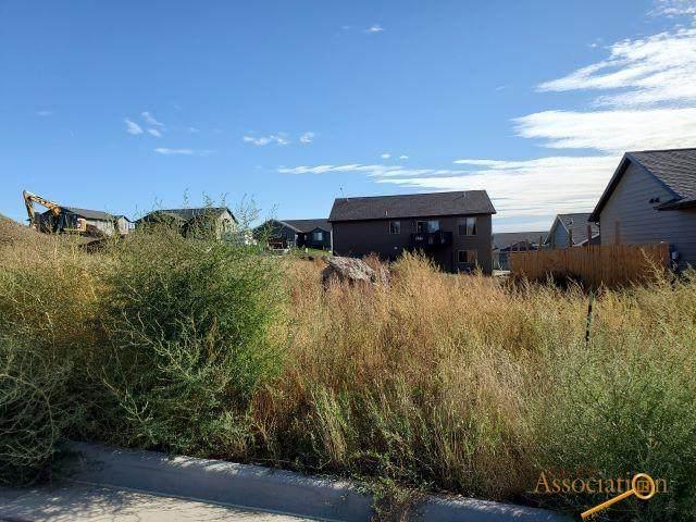 659 Braelynn Ln, Rapid City, SD 57703 (MLS #156566) :: Christians Team Real Estate, Inc.
