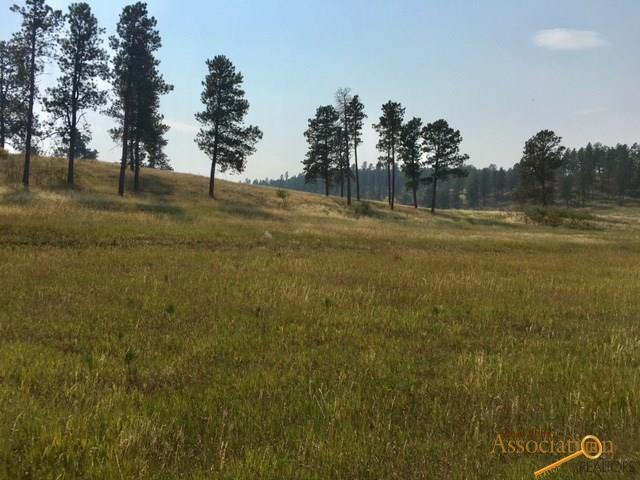 TBD Spotted Fawn Ln, Rapid City, SD 57702 (MLS #137392) :: Dupont Real Estate Inc.