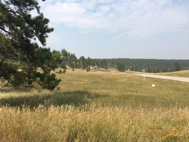 TBD Spotted Fawn Ln, Rapid City, SD 57702 (MLS #137394) :: Dupont Real Estate Inc.