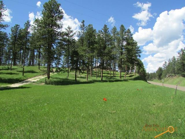 23564 Other, Rapid City, SD 57702 (MLS #142054) :: Christians Team Real Estate, Inc.