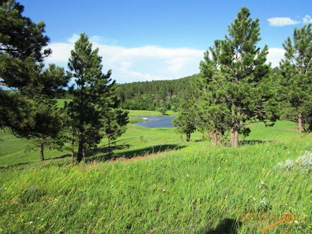 20867 Picardi Ranch Rd, Sturgis, SD 57785 (MLS #145129) :: Christians Team Real Estate, Inc.