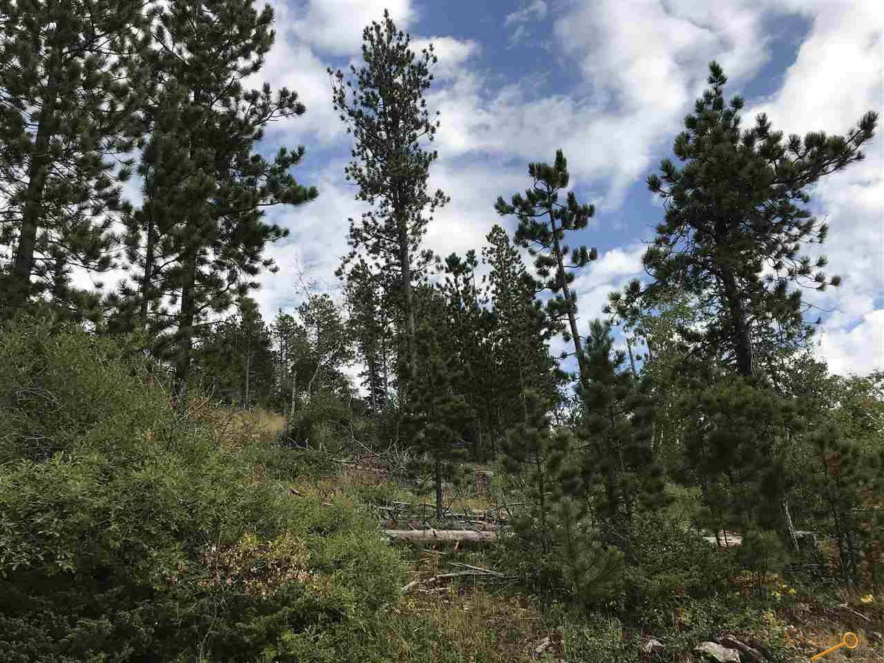 TBD Terry Peak Summit Rd - Photo 1