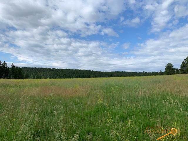 11390 Pass Creek Rd, Custer, SD 57730 (MLS #145562) :: Dupont Real Estate Inc.