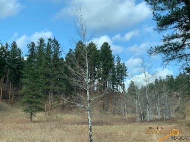 12388 Other, Hill City, SD 57745 (MLS #151702) :: Christians Team Real Estate, Inc.