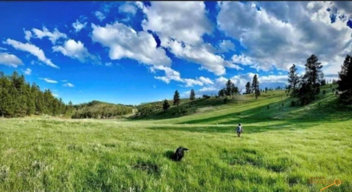 24435 Medicine Mountain Rd - Photo 1