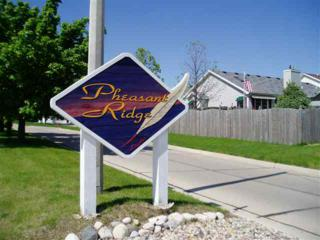 Lot 351 Pheasant Ridge, Normal, IL 61761 (MLS #2080196) :: Berkshire Hathaway HomeServices Snyder Real Estate