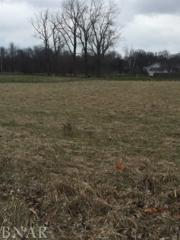 11-12 Lots Jensen, Saybrook, IL 61722 (MLS #2171051) :: Berkshire Hathaway HomeServices Snyder Real Estate