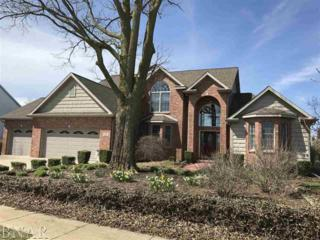 57 Pebblebrook Ct., Bloomington, IL 61705 (MLS #2171137) :: Berkshire Hathaway HomeServices Snyder Real Estate
