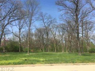 Lot 1 Briar, Bloomington, IL 61705 (MLS #2171315) :: Berkshire Hathaway HomeServices Snyder Real Estate