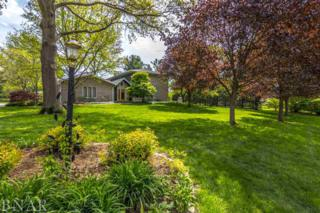 19105 Woodland Trail, Bloomington, IL 61705 (MLS #2171568) :: The Jack Bataoel Real Estate Group